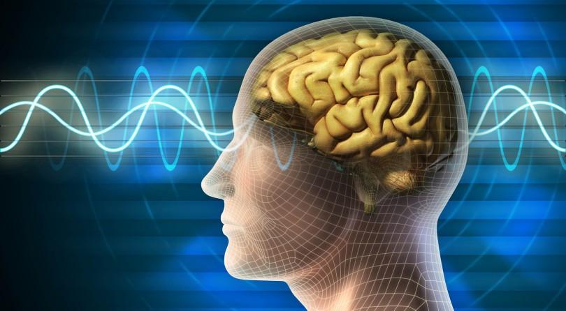 Josh Peace Reviews the Science of Neuromarketing